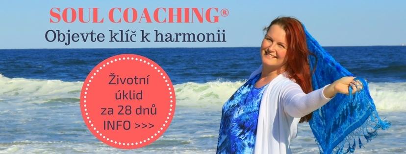 28denní Soul Coaching česky